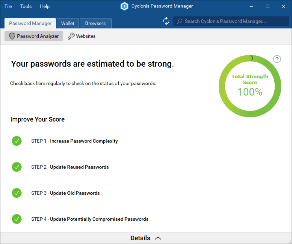 Cyclonis Password Manager Software