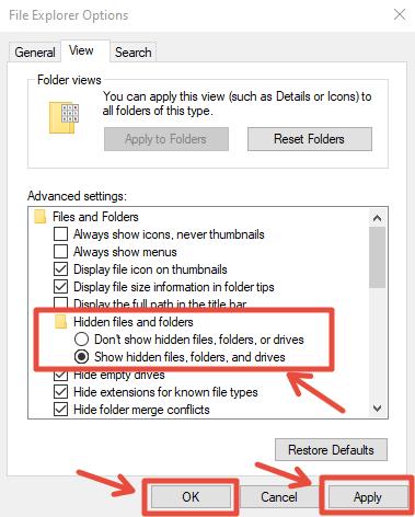 File Explorer Option
